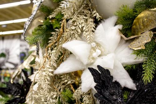 Small Christmas @SPW-5